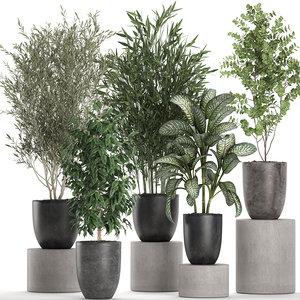 3D plants black pots