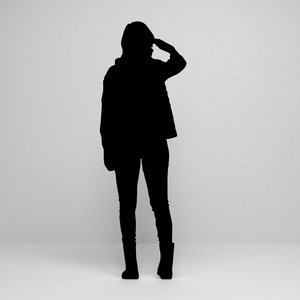 3D silhouette scenes model
