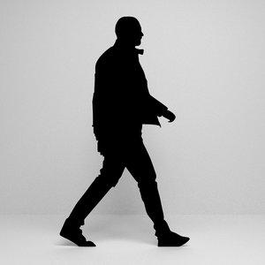 silhouette scenes model
