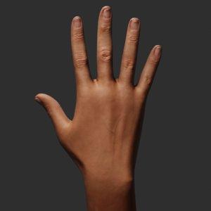 hand blender eevee 3D model