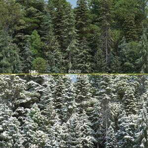 pine trees 60 3d model