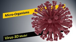 3D low-poly infection scientific model