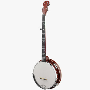 3D banjo instrument music