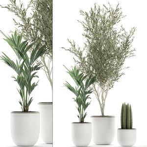 3D ornamental plants flowerpots decorative model