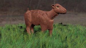 3D omani goat animal oman model