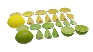 lemon fruit model