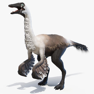 3D gallinimus gallimimus