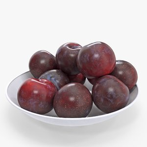 plate plums model