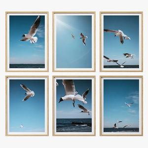 juniqe seagulls poster model