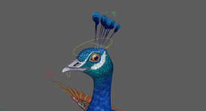 3D peacock stylized