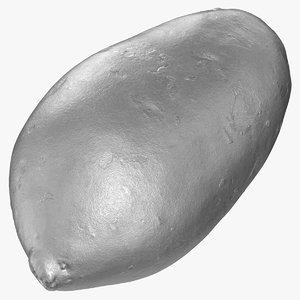 3D sweet potato 05 silver