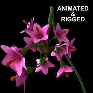 flowers open animation model