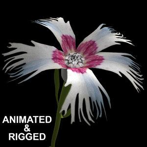 3D flowers open animation