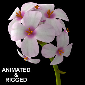 3D flowers open animation