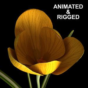 3D model flowers open animation