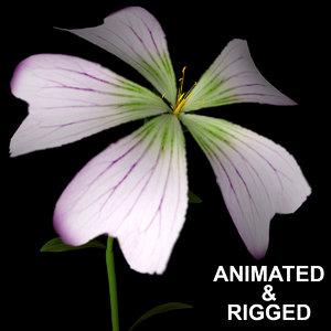 flowers open animation 3D