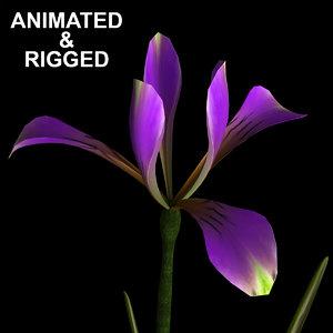 3D model flowers open