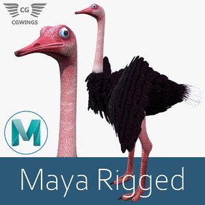3D ostrich bird nature