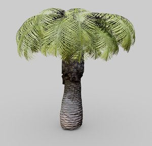 plant small palm tree model