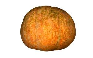 pumpkin fruits 3D model