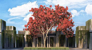 tree flowers 3D
