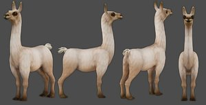 farm animal alpaca mammal 3D model