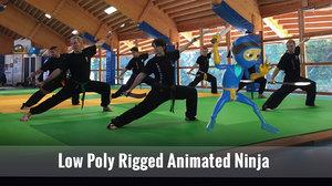3D ninja ar vr model