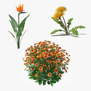 3D plants flowering