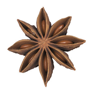 3D photorealistic scanned star anise