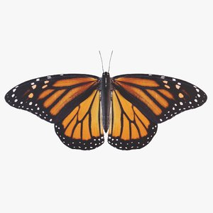 3D monarch butterfly