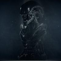 Xenomorph Bust3D