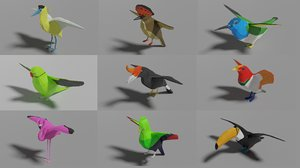 3D exotic birds pack 9 model