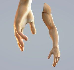 hand anatomy man rig model