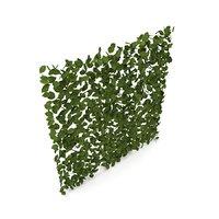 Hedge Panel (1m x 1m)
