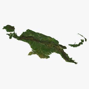 relief papua new guinea model