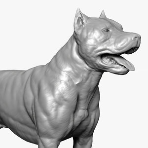 base dog american pit bull 3D model
