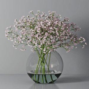 gypsophila vase model