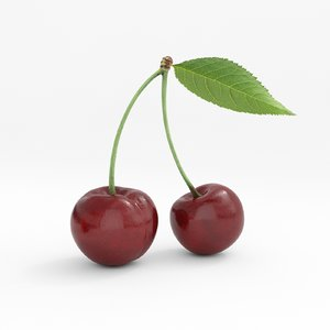 food cherry fruit 3D model