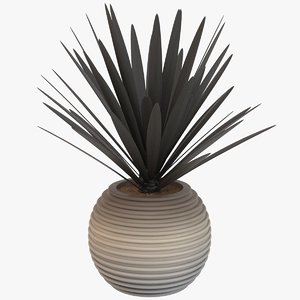obj decorative pot plant