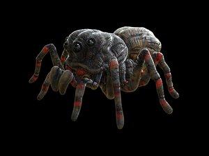 3D model arachnid insectes