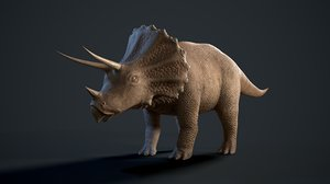 triceratops rigging animation model
