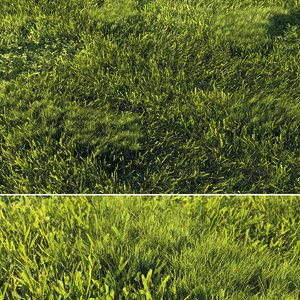 3D real grass model