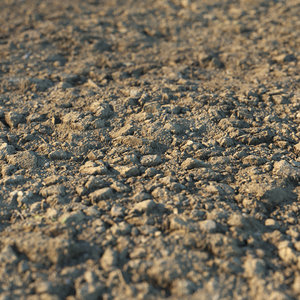 3D earth soil