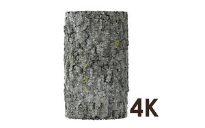 Tree Bark Material 4K