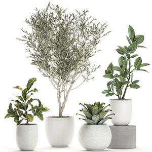 3D plants white