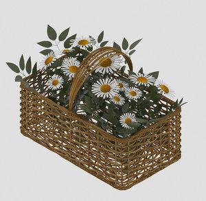 3D basket camomiles