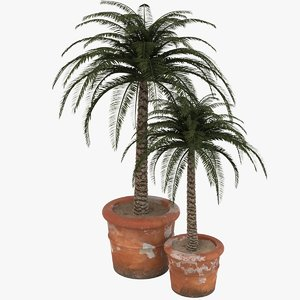 decorative pot plant 3ds