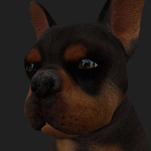 3D rigged dog sits place model