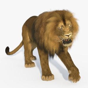 lion ornatrix rigged animation 3D model