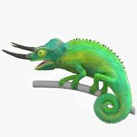 Chameleon Jackson